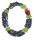 >環環相連的生命之鏈