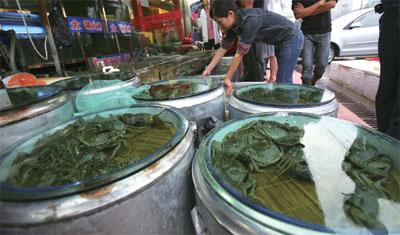 >中國湖泊污染   毒蟹恐行銷港台