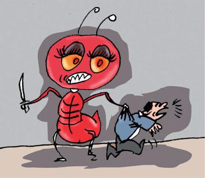 「蟻力神」  騙局和賭局