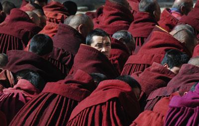 >絳紅色的西藏