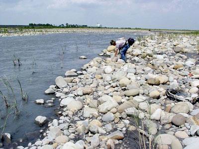 奇石的魅力——來自濁水溪的驚奇