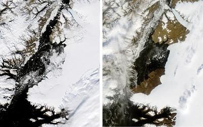 【生態變化】格陵蘭冰川消退