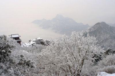 【天涯遊蹤】大雪美景 極品泰山