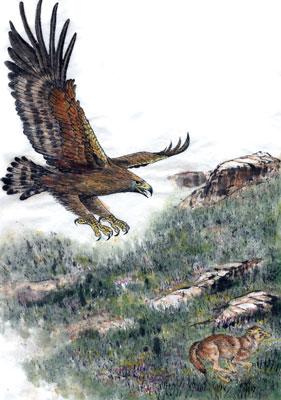 【創造】 狂鳥的國度──第三幕 第一景 大鵰的高山
