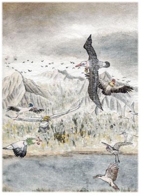 >【創造】狂鳥的國度