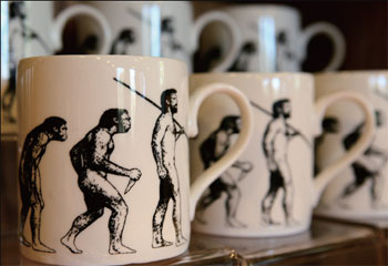 解構進化論 人人有責