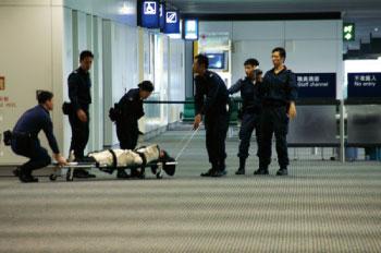 探向香港入境處的黑手
