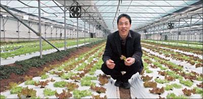 韓國最大有機農場主人柳謹模專訪