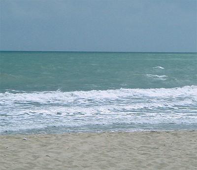 人生感悟 │ 臨海而居聽濤聲
