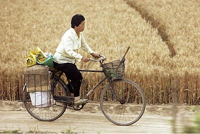 中國糧食危機