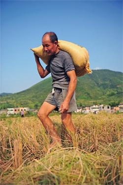 農民被上樓的「合理性」與後效應