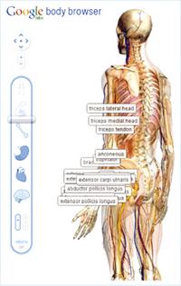 Google透視人體 誰來透視我們?