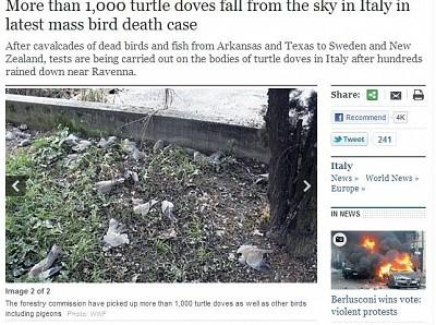 死鳥從天降、死魚河上漂 世界大災難的預兆?