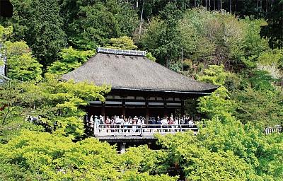 古城 老友 京都的顏色