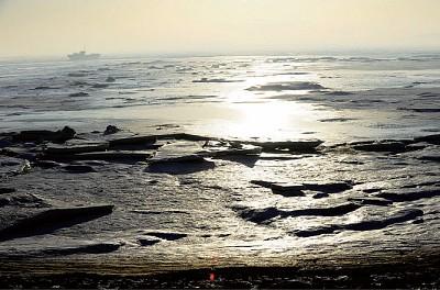 被冷處理的渤海漏油