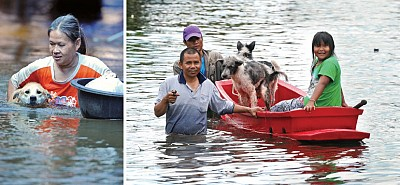 泰國洪水親歷感受