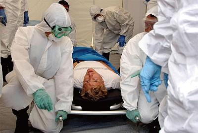 2012九大猜想之3  新型禽流感肆虐