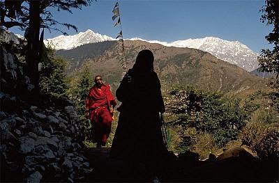 專訪達賴喇嘛駐澳代表處聯絡官達珍