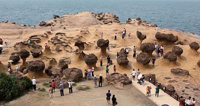 生態行旅|野柳公園 大自然賜予的地質博物館