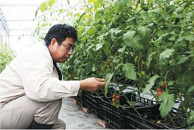種田就是「種心」——吳慶鐘自然耕作之道
