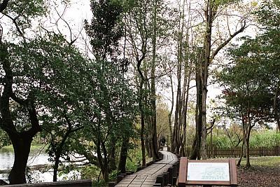 生態行旅|古樸風韻引人懷舊 羅東林業文化園區