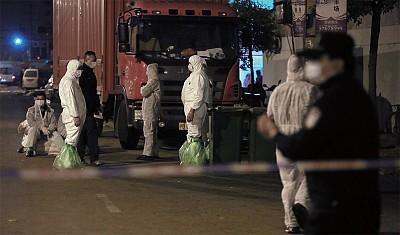 大陸流感乍起 全球擔憂末日病毒