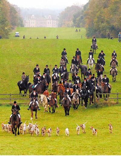 天涯遊蹤 英國狩獵傳統與獵狐情結