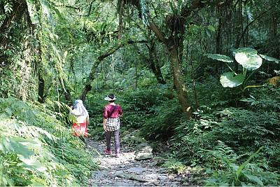 慢遊.腳蹤 松羅國家步道 保留原始自然風貌