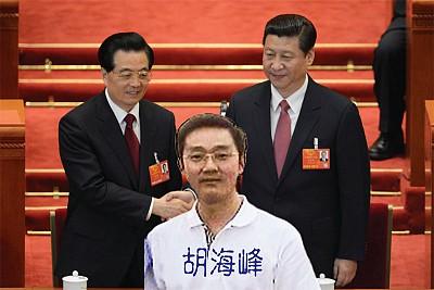 胡錦濤兒子滿頭白髮躋身政法系