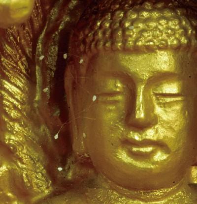 佛像聖像在流淚 警示逃生路