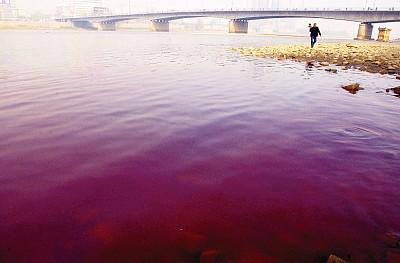 中國水污染恐怖 自來水僅剩沖馬桶功能