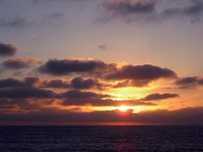 反璞歸真 加州Catalina island記遊