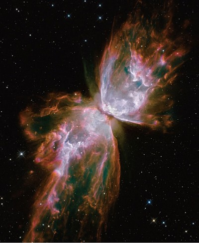 研究:宇宙本身是一個生命