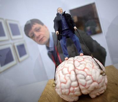 腦內有免疫淋巴管 教科書將改寫