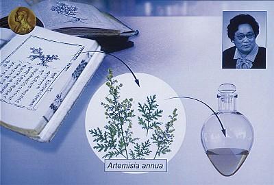 屠呦呦得諾貝爾獎 被中共埋沒44年
