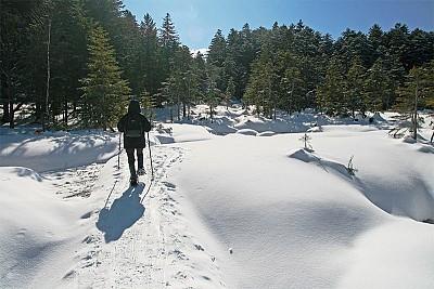 寒冬北海道 健走野騎深度遊