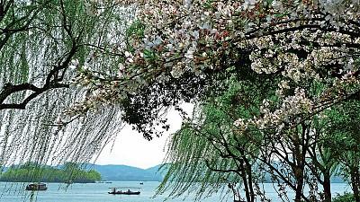 >西湖修堤 蘇軾為民造千載之福
