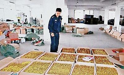 浙江有毒減肥膠囊銷售全國 案值達10億元